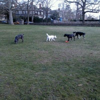 Photo taken at Hawthorn St Dog Park by Lindsay G. on 4/2/2012