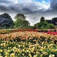 Photo prise au Queen Mary's Gardens par ibo •. le7/5/2012