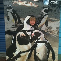 Photo taken at Tampa's Lowry Park Zoo by Kristin H. on 5/14/2012