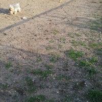 6/7/2012에 Pahola J.님이 Owls Head Dog Park에서 찍은 사진