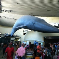 Photo taken at Aquarium of The Pacific by Rasheeda W. on 7/29/2012