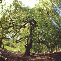 Photo taken at Halifax Public Gardens by Adam C. on 5/21/2012