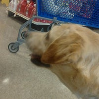 Photo taken at PetSmart by Holly M. on 4/28/2012