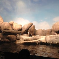 Photo taken at Penguin Tank by Franco R. on 8/24/2012