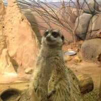 Photo taken at Staten Island Zoo by Tara A. on 6/14/2012
