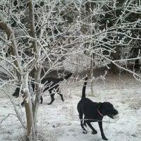 Photo taken at Battle Creek Dog Park by Jean J. on 2/4/2012