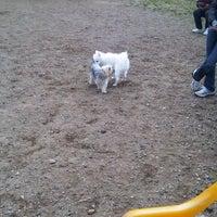 2/4/2012에 Pahola J.님이 Owls Head Dog Park에서 찍은 사진
