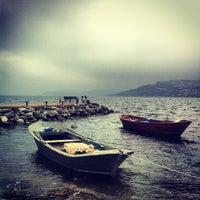 2/14/2012 tarihinde خالد ا.ziyaretçi tarafından Gülizar Bahçe'de çekilen fotoğraf