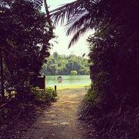 Das Foto wurde bei MacRitchie Nature Trail von Chalith am 6/14/2012 aufgenommen