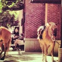 5/18/2012にJeri B.がSisters Coffee Companyで撮った写真