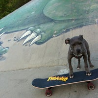 Photo taken at Green Dragon Hidden Skate Spot by Tim S. on 5/28/2012