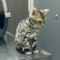 Photo taken at Banning Veterinary Hospital by Dennis L. on 7/7/2012