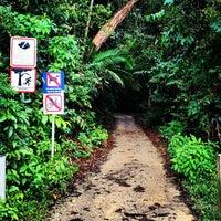 Das Foto wurde bei MacRitchie Nature Trail von Chalith am 5/25/2012 aufgenommen