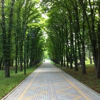 Снимок сделан в Ботанический сад КубГАУ им. И.С. Косенко пользователем Михаил 7/11/2012