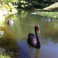 Foto tirada no(a) Parque Terra Nostra por Caroline B. em 9/2/2012