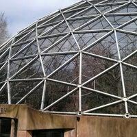 3/17/2012にAmaryllis R.がQueens Zoo Aviaryで撮った写真