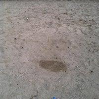 6/23/2012にJen C.がLaurel Creek Conservation Areaで撮った写真