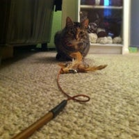 Photo taken at Our Pet and Plant Care by Hunter on 7/11/2012