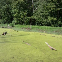 Photo taken at Howell Wetlands by Ron H. on 7/28/2012