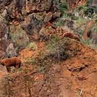 Foto tomada en Parque de la Naturaleza de Cabárceno por Fernando DJ F. el 3/17/2012