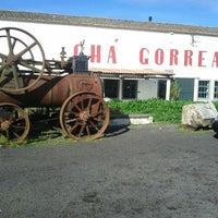 Photo taken at Chá Gorreana by Tiago S. on 2/18/2012
