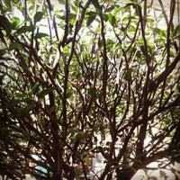 Photo taken at Original da Granja Galeteria by Marcelo B. on 4/17/2012