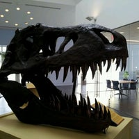Photo taken at Delaware Museum Of Natural History by Greg H. on 3/4/2012