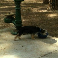 Photo taken at Daffin Park Dog Park by Alia F. on 4/16/2012