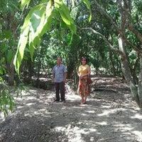 Photo taken at (อัมพวา) Amphawa by Ampa J. on 4/5/2012