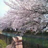 Photo taken at さきたま古墳公園 by ka2_sato on 4/10/2012