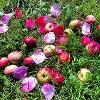 Снимок сделан в Яблоневый сад пользователем Sergey R. 8/5/2012