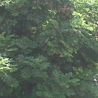 Foto tomada en Parque 9 - Virgen del Carmen por Raffo T. el 4/1/2012
