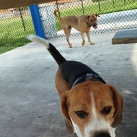 Photo taken at West Kendall Hammocks Dog Park by Angelica S. on 6/2/2012