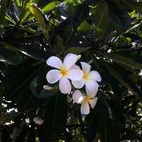 Photo taken at Laie Stake Center by Myron B. on 8/5/2012