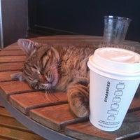Photo taken at Starbucks by Öznur E. on 2/13/2012