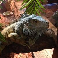 Photo taken at Winking Lizard Tavern by David C. on 7/19/2012