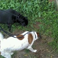 Photo taken at Doggy Walk by Viran F. on 9/6/2012