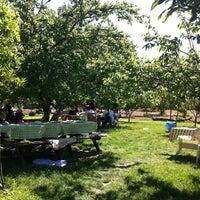 Photo taken at Patika Cafe & Restaurant by Çağrı T. on 4/23/2012