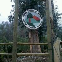 Photo taken at Parque Nacional La Campana by Carlos W. on 9/2/2012