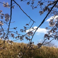 Photo taken at 安倍川右岸堤防静岡大橋付近 by chida3 on 3/28/2012