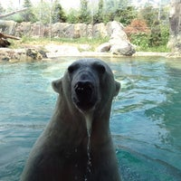 Photo taken at Rocky Shores at Hogle Zoo by Quarry on 7/13/2012