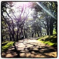 Foto scattata a Parque do Carmo - Olavo Egydio Setúbal da Sergio M. il 6/16/2012