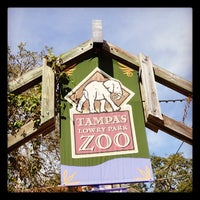 Photo taken at Tampa's Lowry Park Zoo by Mike on 2/21/2012