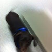 Photo taken at Oak Creek Veterinary Hospital by Landen S. on 3/2/2012
