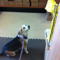 Photo taken at Pet$aver Super Store by Adrienne M. on 3/10/2012
