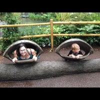 Photo taken at Central Park - Tisch Children's Zoo by Chelley L. on 6/12/2012