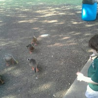 Photo taken at Rheudasil park lower pond by Rebecca D. on 8/4/2012