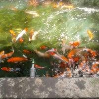 Photo taken at Salero Jumbo by erika f. i. on 4/4/2012