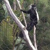 Photo taken at Monkey Trail by Ray V. on 2/19/2012