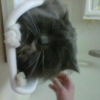 Photo taken at Pet Samaritan Clinic by kat on 2/21/2012